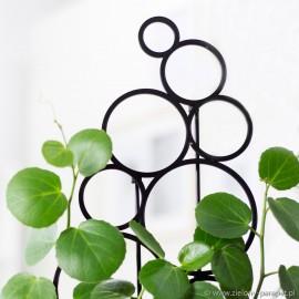 Drabinka do roślin pnących- bąbelek rozm. L