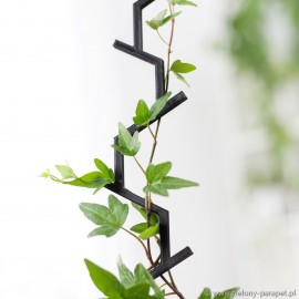Drabinka do roślin pnących- GAŁĄZKA