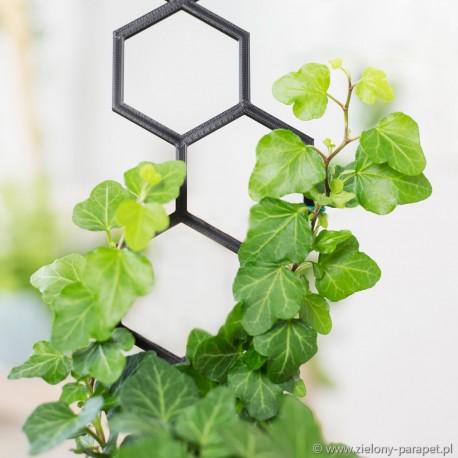 Drabinka do roślin pnących- sześciokąt rozm. S