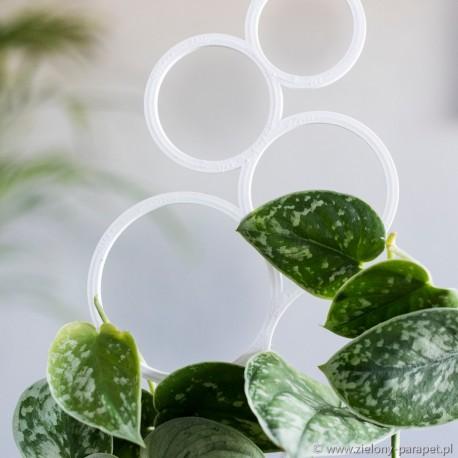 Podpora do roślin pnących, BĄBELKI rozmiar M -biała