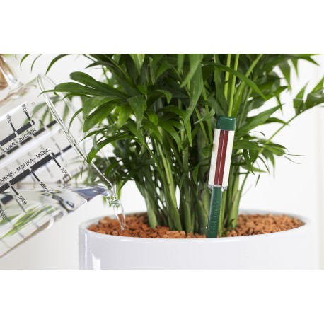 Podłoże SERAMIS® do uprawy roślin domowych -innowacyjne granulki