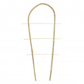 Drabinka bambusowa wygięta, podpora do roślin pnących