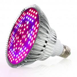 Żarówka LED do uprawy roślin