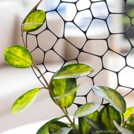 Podpora do roślin pnących, FOAM - biała 2.7